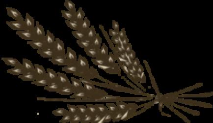 Żurek z Wolicy